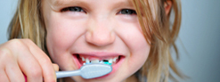 Benefits Analysts - dental insurance